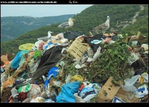 die Drei von der Müllhalde :o))