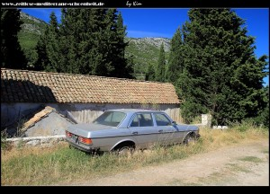Südseite mit Mercedes 230 e