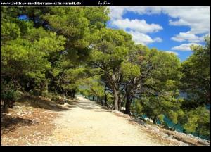Makadamweg zur Spitze/Kap der Halbinsel Gradina