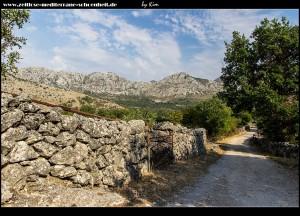Straße nach Točionik