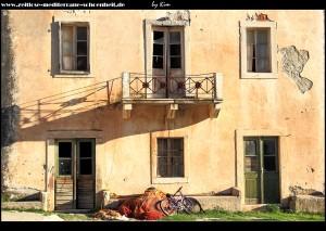 Wohnhaus neben der Loggia