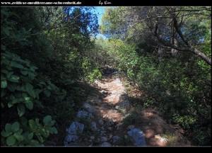 Weg rauf zum Velji Vrh