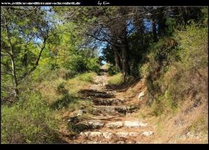 Vorsicht Stolperfallen - Weg durch den Wald von Šunj nach Lopud