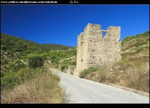 Borovik - Mladineova Kula