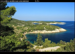 Blick auf die Buchten Mala und Vela Svitnja