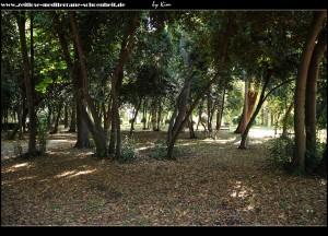 der perivoj-Vitturi-Park