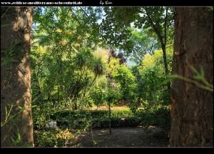 an der Grundschule mit botanischem Garten