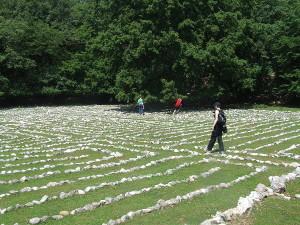 Labyrinth im Tramuntana-Wald