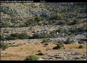 Ruinen des Hirtendorfs Lemešini Doci