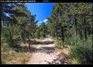 Spazierweg auf Sv. Petar