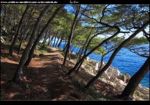 Spaziergang auf dem Kap Osejava