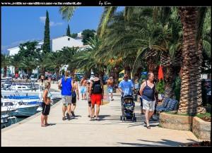 Palmenpromenade